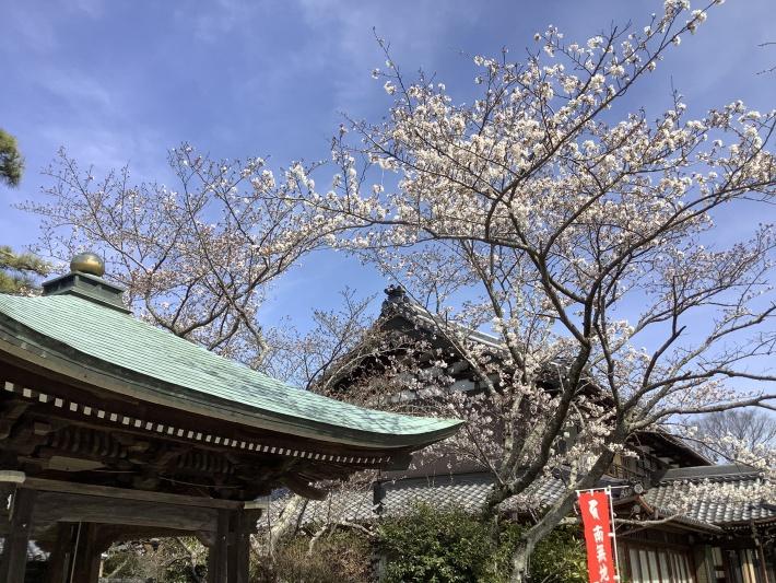 天気 春日井 市